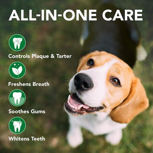 Vet's Best Enzymatic Dog Toothpaste | Teeth Cleaning and Fresh Breath Dental Care Gel | Vet Formulated